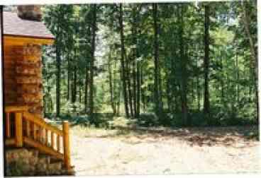 Luxury Log Cabin in 20 acres near Manistee River: Lost Oak Lodge