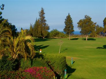 Aloha Spoken Here! October 1-16 SPECIAL, Two Saltwater Pools, on Golf Course