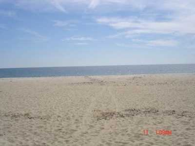 Hyannisport Hideaway - Beautifully Appointed, Secluded, near Craigville Beach!