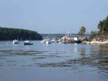 Cozy Maine Coast Cottage - Minutes to Popham Beach