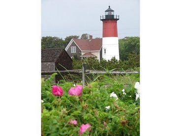 Cape Cod N.Truro