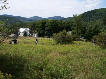 Cozy Country Farmhouse  along the Catskill Scenic Trail