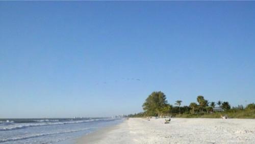 Shores Vacation Hideaway