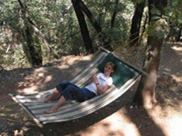 Yosemite Bug Rustic mountain Resort