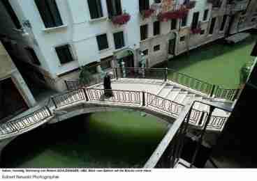 La Rosa di Venezia