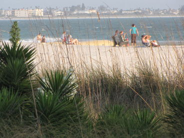 Gulf Winds 201