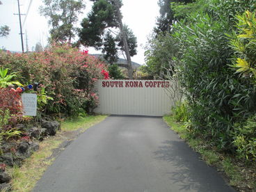 Secluded Tropical Honeymoon Studio Hideaway at South Kona Coffee.