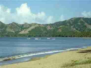 Roberto's Hidden Paradise - 3BR/2BA and 2 BR/1BA  villas