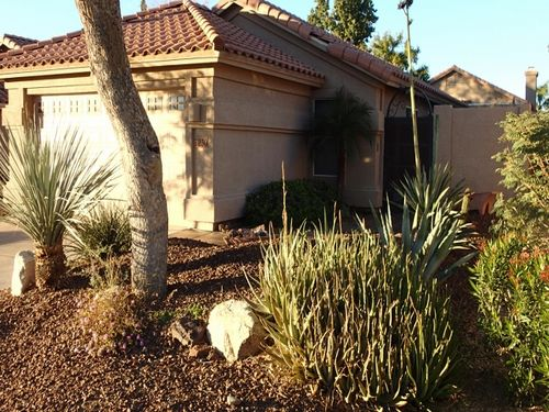View Summer time Rates in Scottsdale