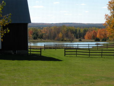 AuSable Valley View Farm