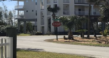 View Suwannee Florida