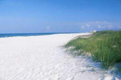SPRING SPECIALS: 150 paces 2 BEACH btwn 2 pools/Tennis * Dog Friendly Beach