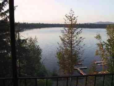 View Honeysuckle on Hayden Lake