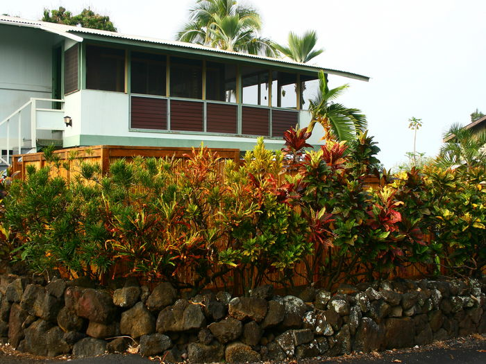 View The Hula Hut