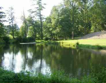 View 4000 SF 6BR4BA Private Lake
