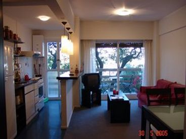 View Furnished Palermo Apt Buenos