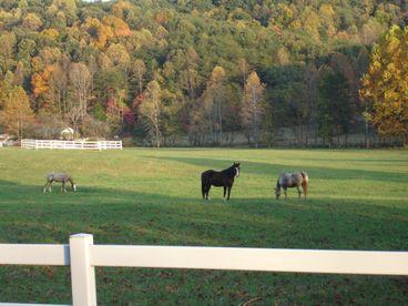 View T Lea Farm
