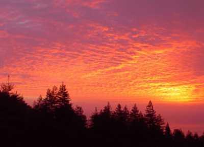 View Big Sur Mountain Retreat Rental