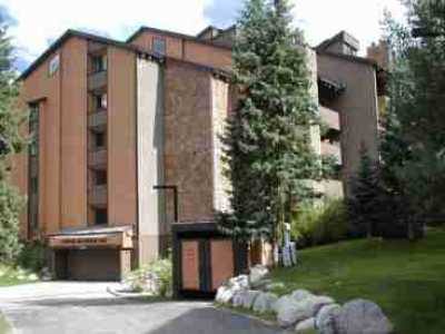 View 2BR3BA  216   Ski inout Discounted