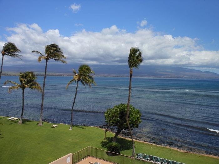 View Direct Ocean Front Great Ocean