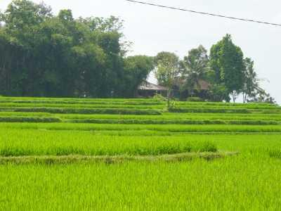 View Villa Bukit Jati