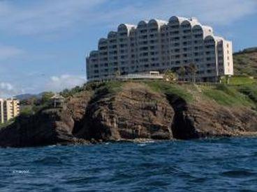 View Punta Ballena