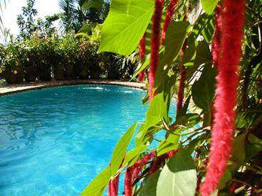 View Casa Owaissa