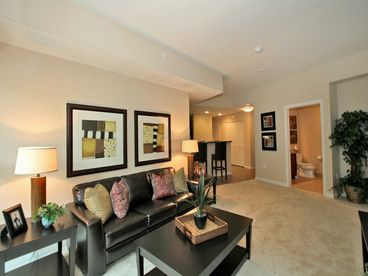View 1BR1BA ELEGENT DOWNTOWN CONDO