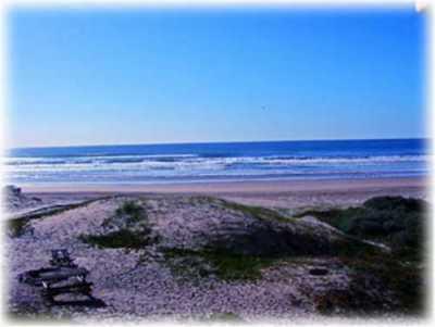 View Sanddollar