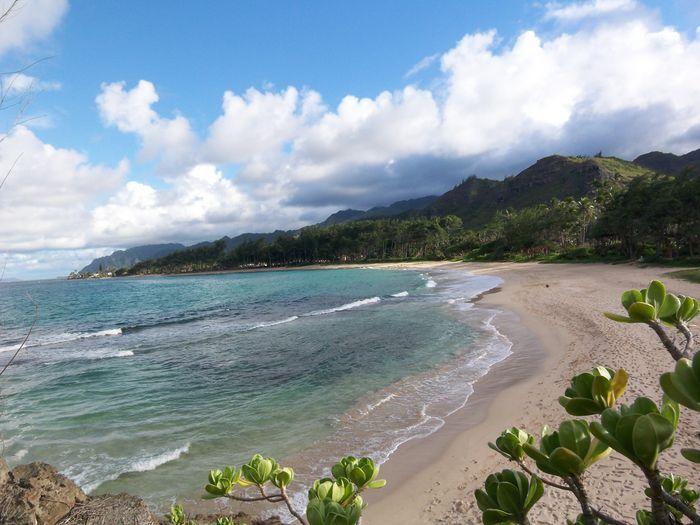 View Beach Lane Retreat2 HomesSleeps