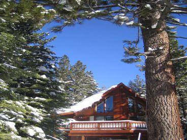 View Jewel in the Sierras