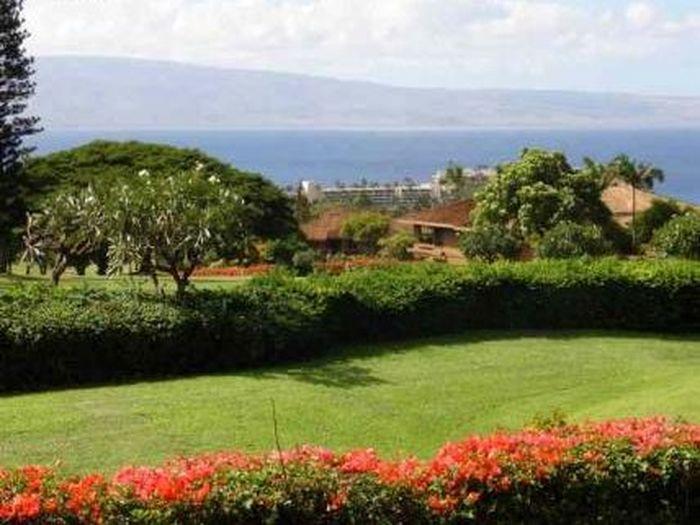 View Masters  at Kaanapali Hillside
