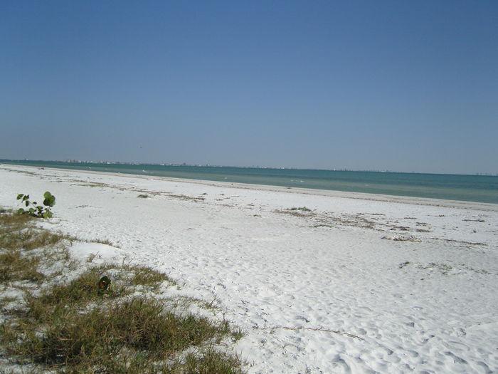View Tropical  Beach Front Condo