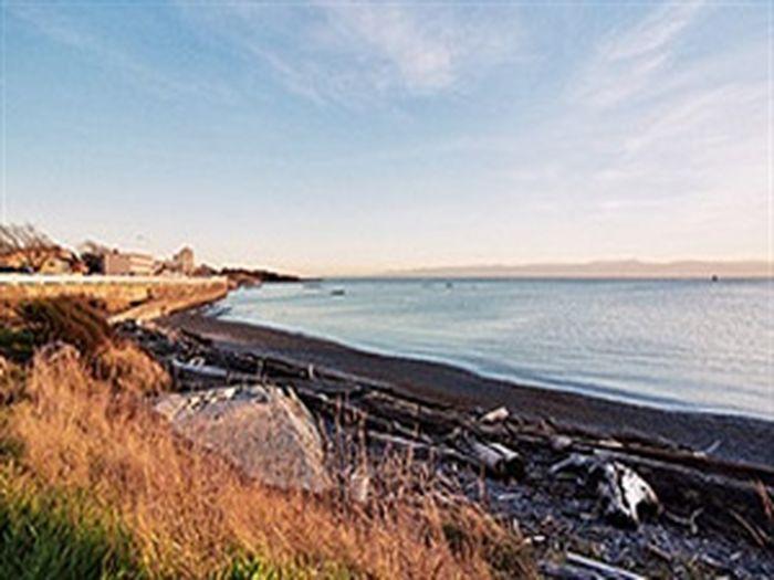 View Avalon Bay