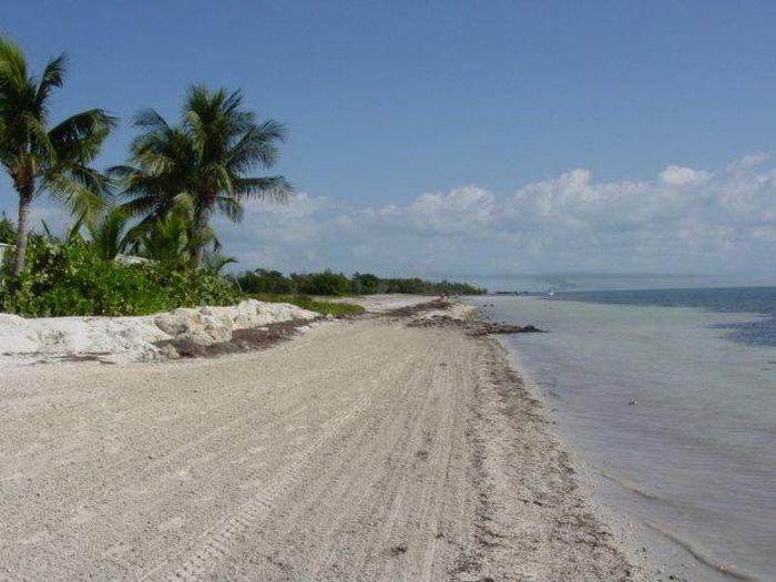 View Coco Plum Beach