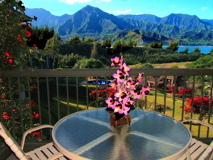 View Condos In Kauai Vacation Rentals