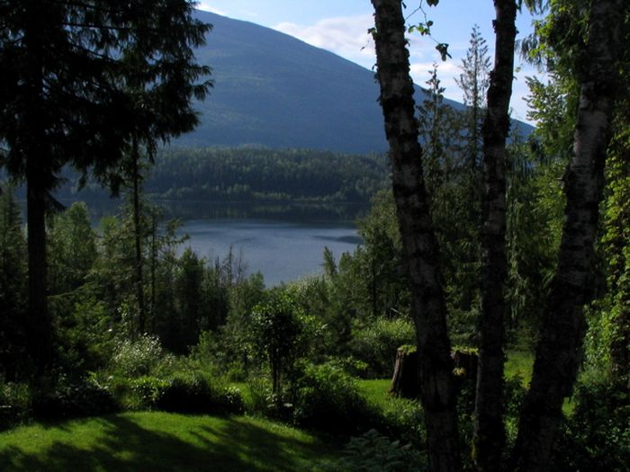 View Shuswap Vacation Rental Pet Friendly