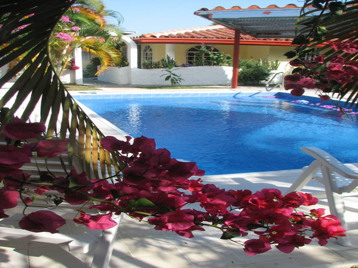 View Las Bougainvilleas Villas near