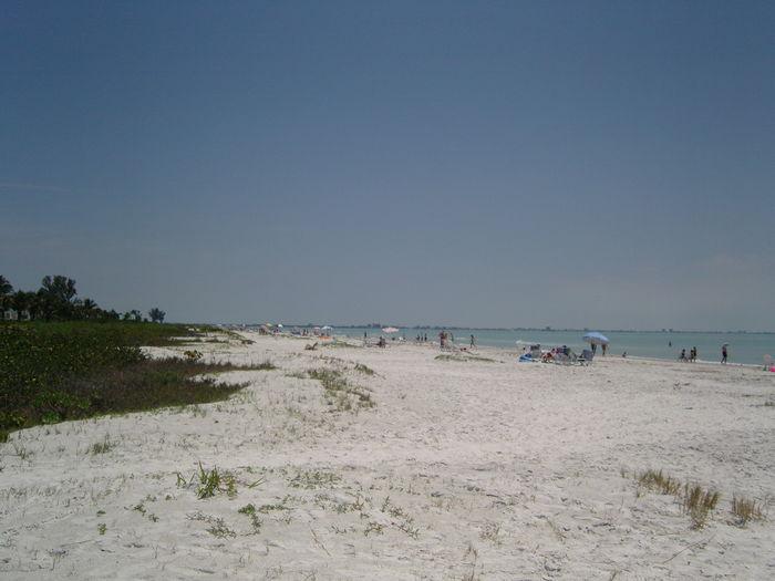 View Beach Front Condo Escape To Paradise
