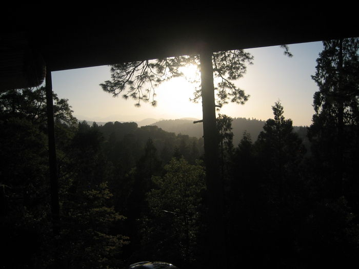 View Serenity Nest