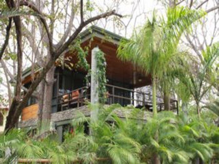 View Tree House Nosara