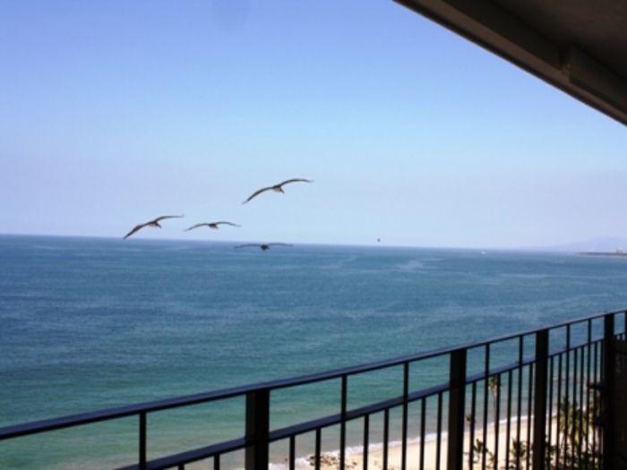 View Condo Grand Venetian 2901  Stunning