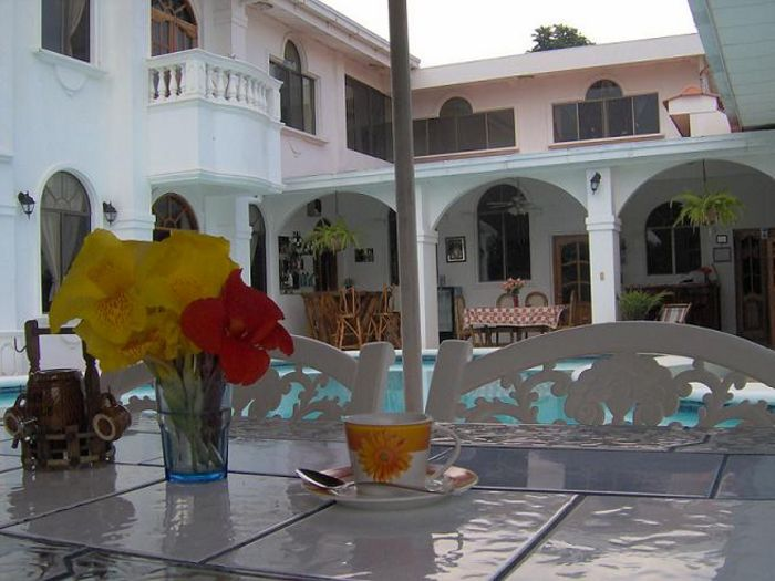 View Dolphin Guest House