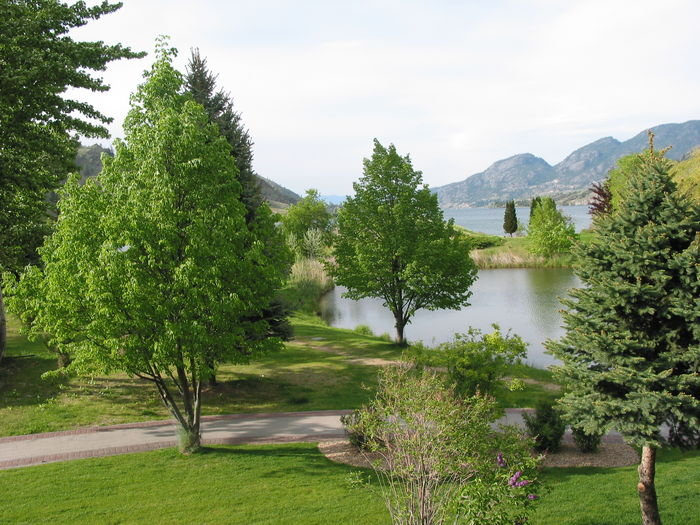 View Luxury Waterfront Condo on Skaha