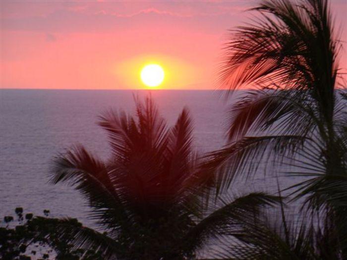 View Paradise Ocean Hale  Fabulous
