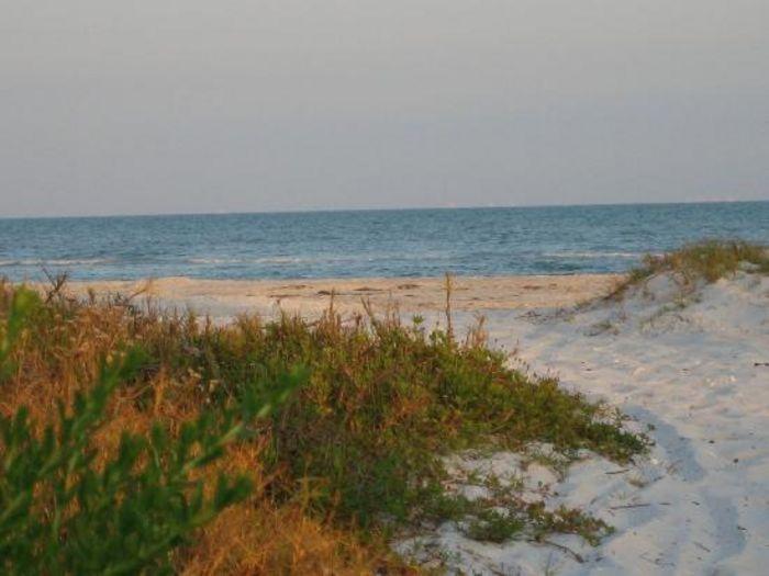 View Beachside Paradise