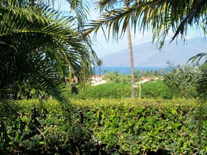 View Maui Kamaole L102  1b