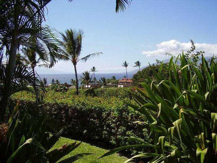 View Maui Kamaole J121  1b