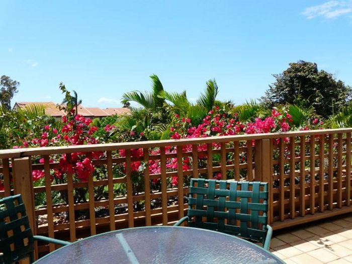 View Maui Kamaole B203  2b