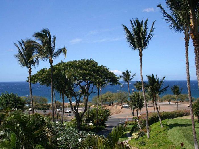 View Maui Kamaole A215  2b